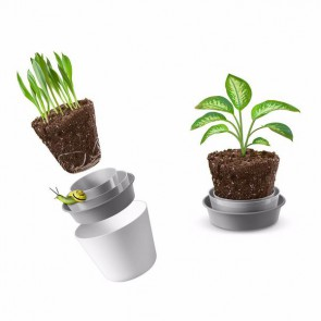 Rem'pot - Collapsible Pot - QUIRKY