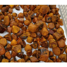 We Buy Ox Gallstones My whatsapp +852 93649624